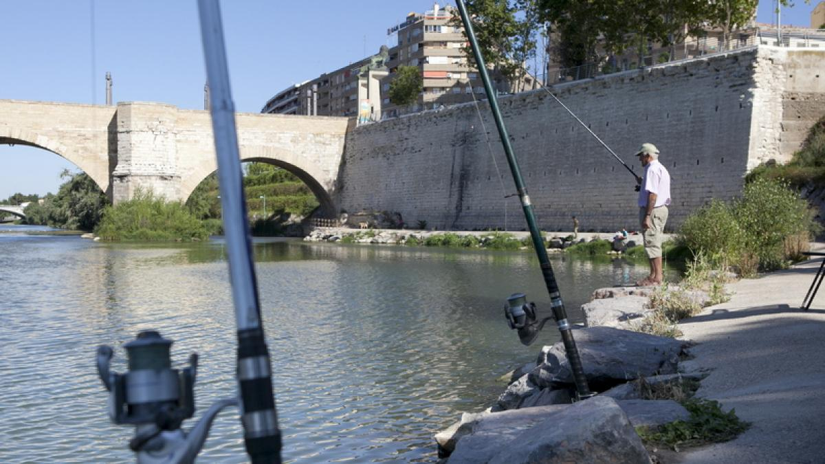 De Pesca En El Tramo Urbano Del Ebro A Su Paso Por Zaragoza