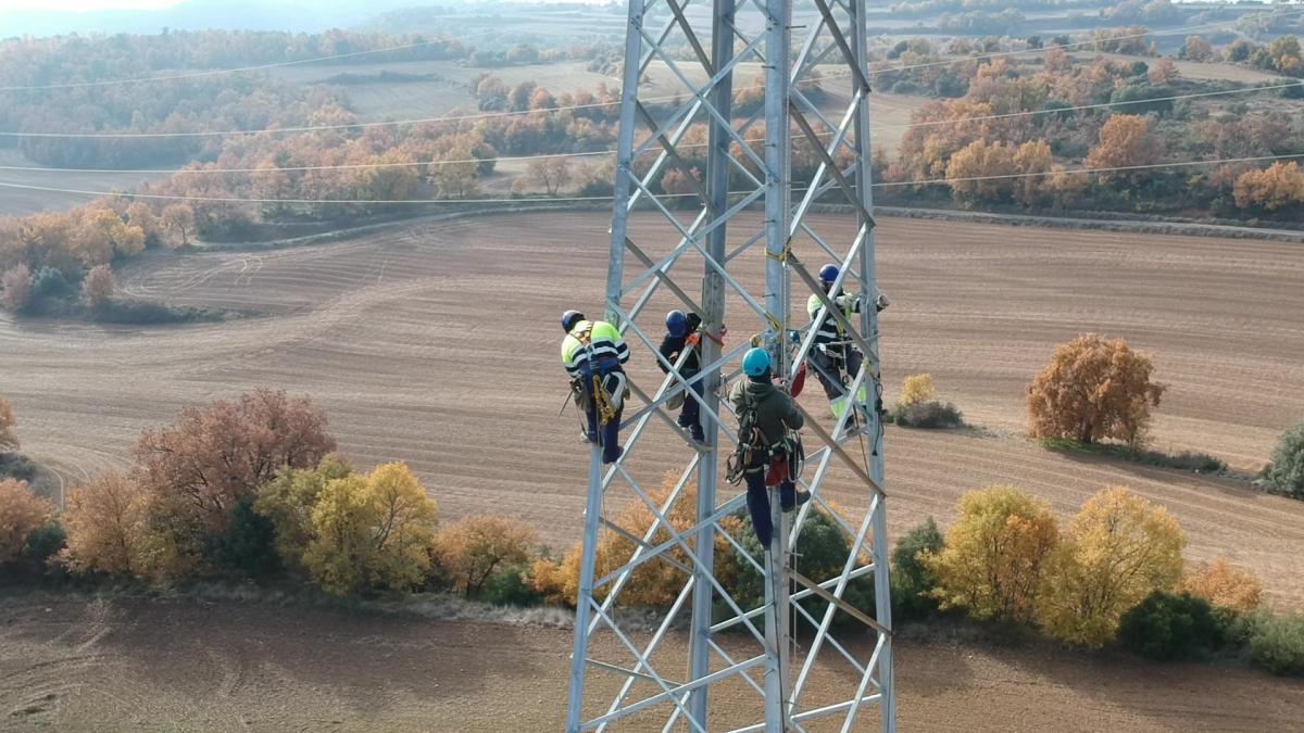 Operarios de Endesa trabajando en la mejora de la red.