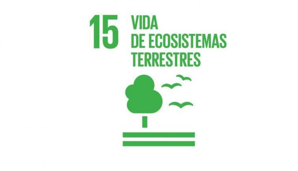 Objetivo 15: vida de ecosistemas terrestres.