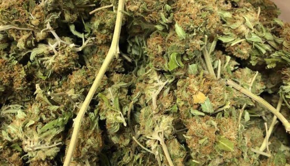 Se le incautaron unos 200 gramos de lo que parece ser marihuana
