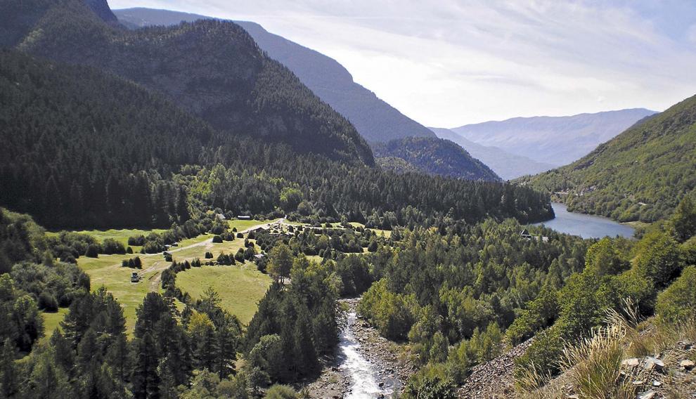 El agua se abre camino entre los bosques de pinos de Senarta.