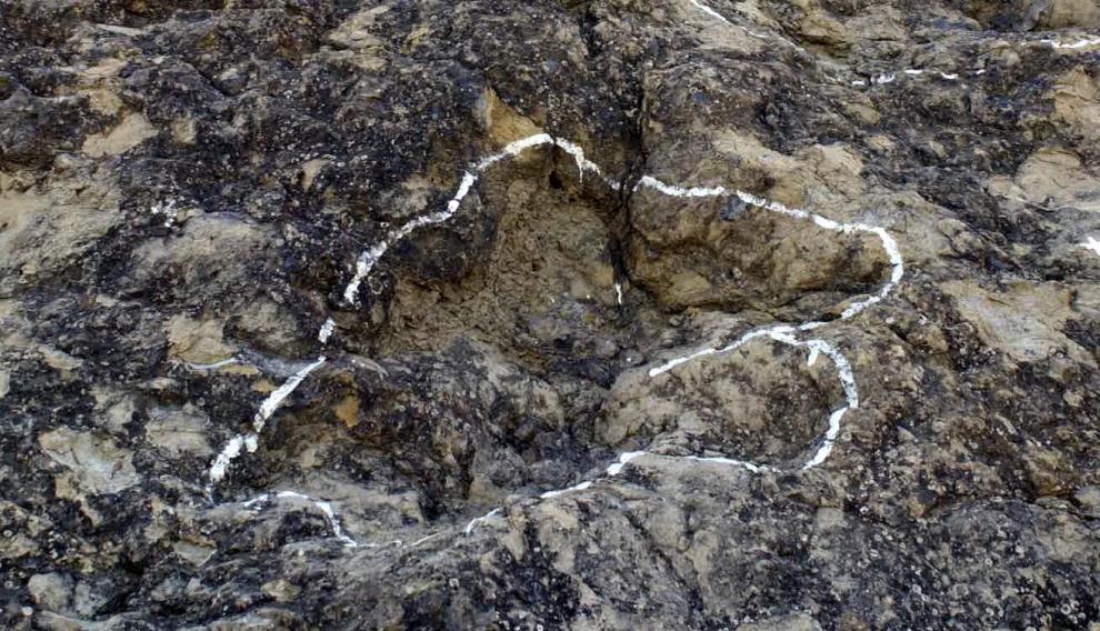 Huellas de dinosaurios en Ariño.