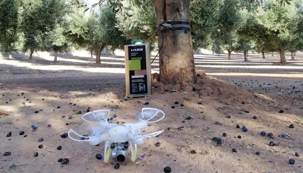Se utilizan drones cuyas imágenes ofrecen información sobre el estado vegetativo de la explotación.