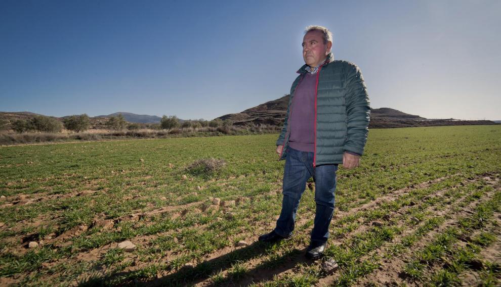 José Manuel Sebastián, agricultor y alcalde de Aniñón, en un campo de cereal.