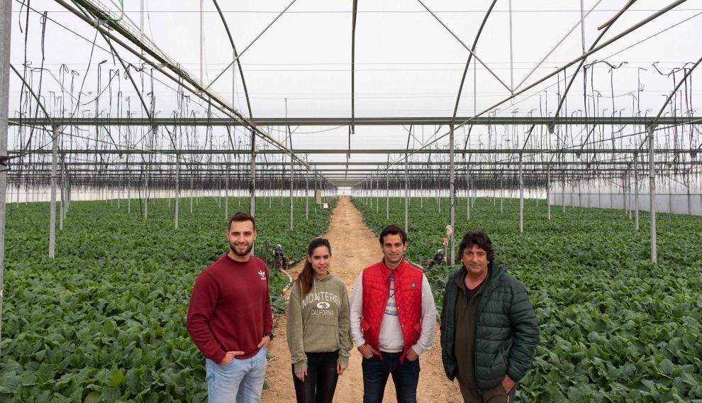 La familia Mené en un invernadero de su explotación del barrio de Montañana, en Zaragoza.