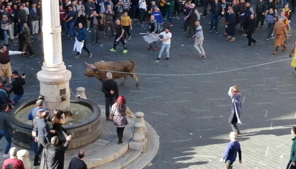 El toro nupcial y ensogado ya se está celebrando en la plaza del Torico
