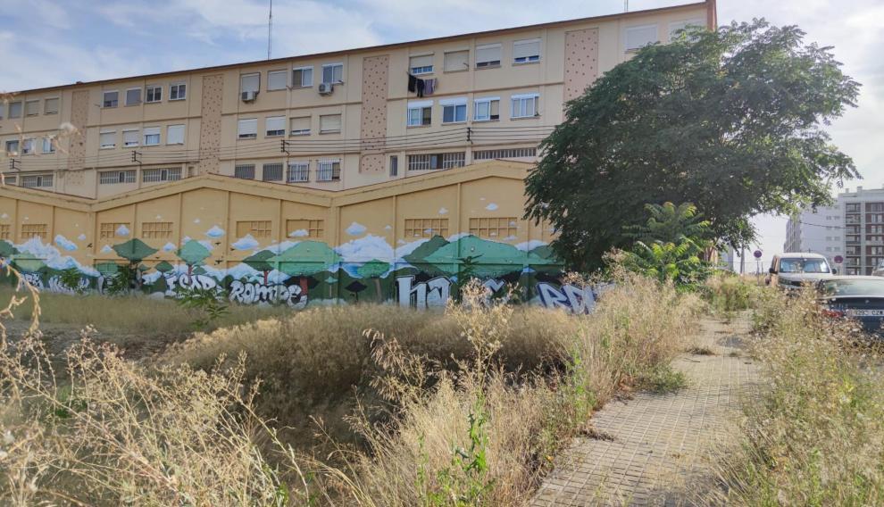 Maleza en el entorno de la calle de Paulino Savirón.