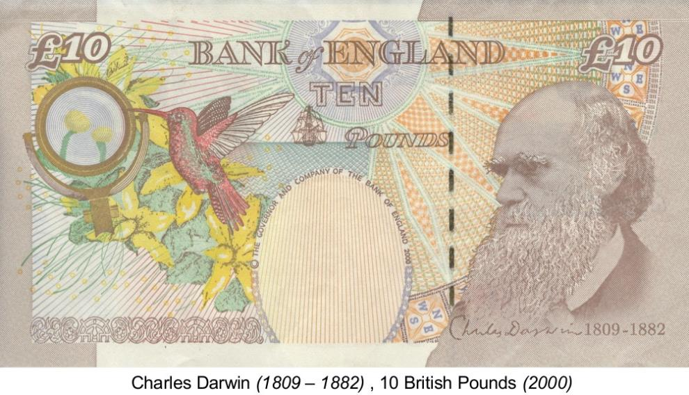 Los colibríes sobran en el billete de 10 libras alusivo a Darwin.