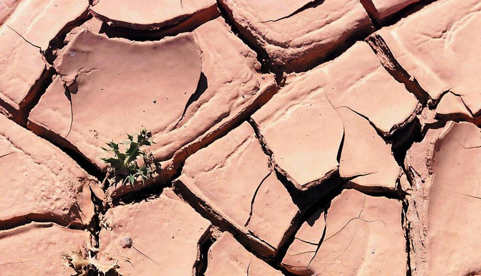 Pantano en Aragón, durante un episodio de sequía..