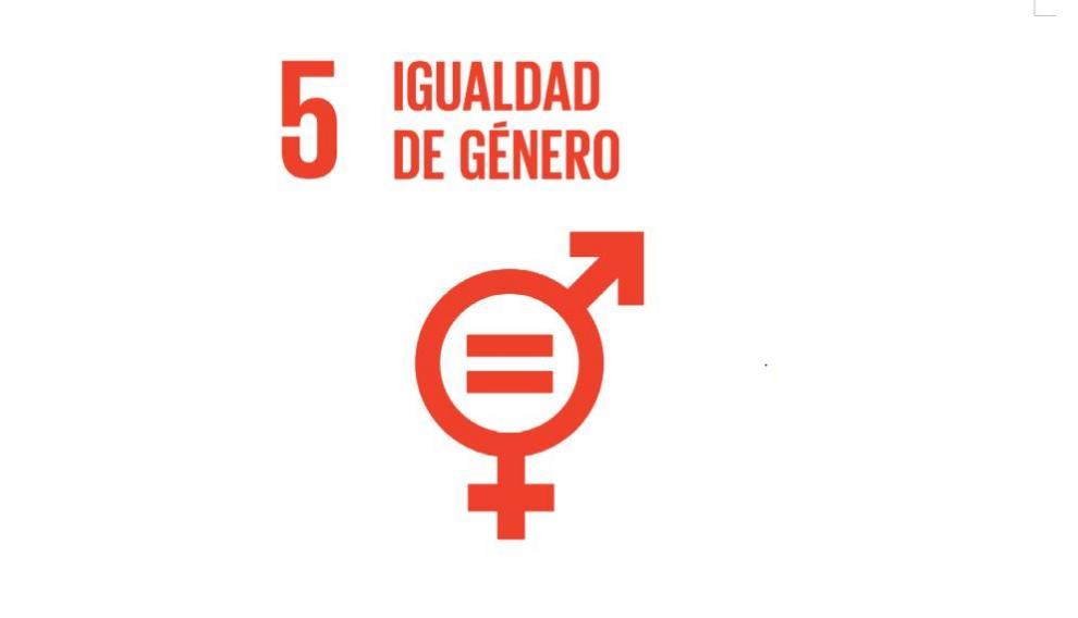 Objetivo 5: igualdad de género.