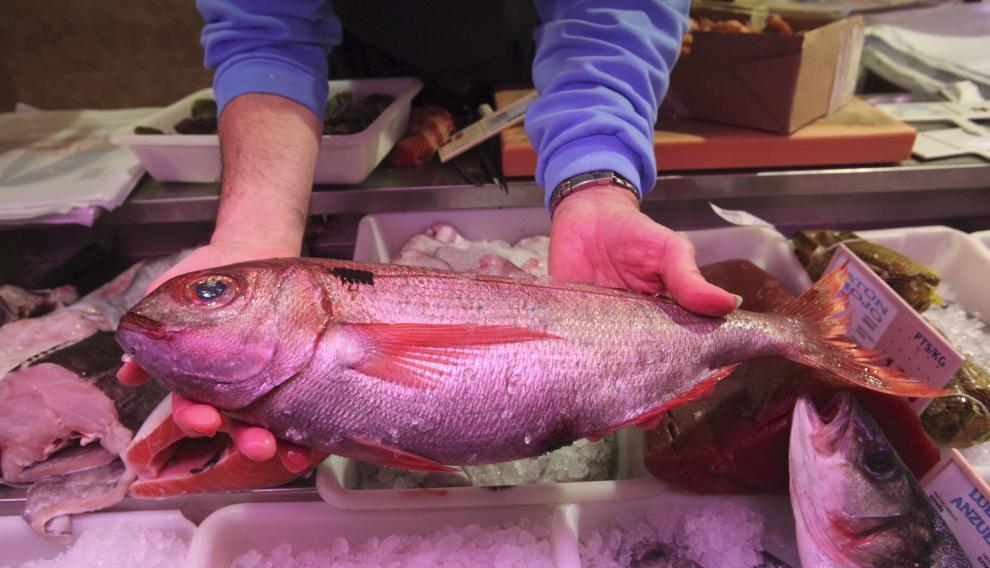 Elegir pescado de temporada ayuda a conservar el medio ambiente.