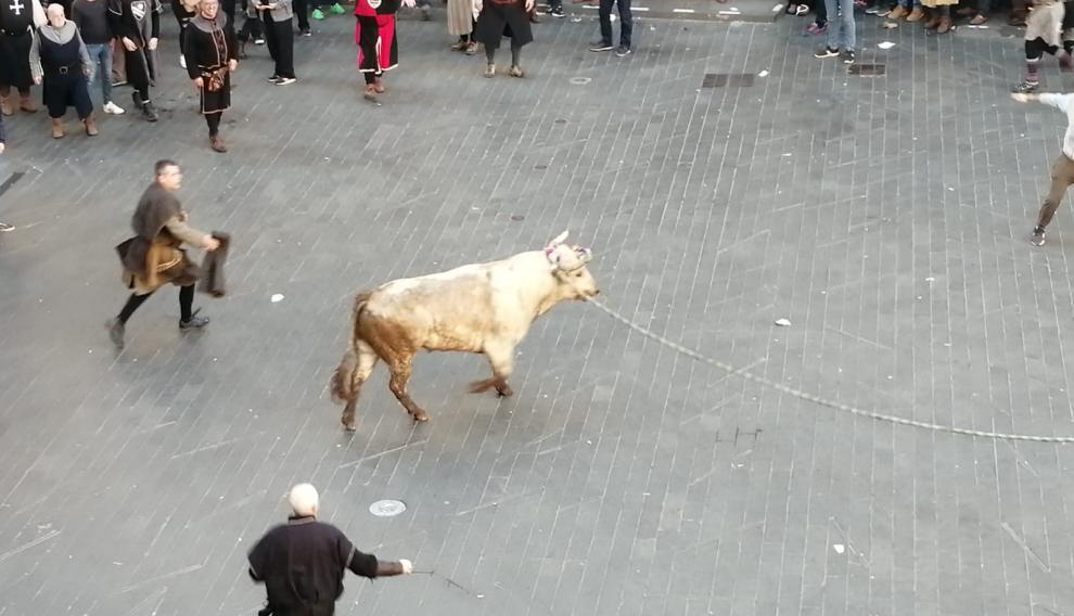 Segundo toro de la tarde en la plaza del Torico.