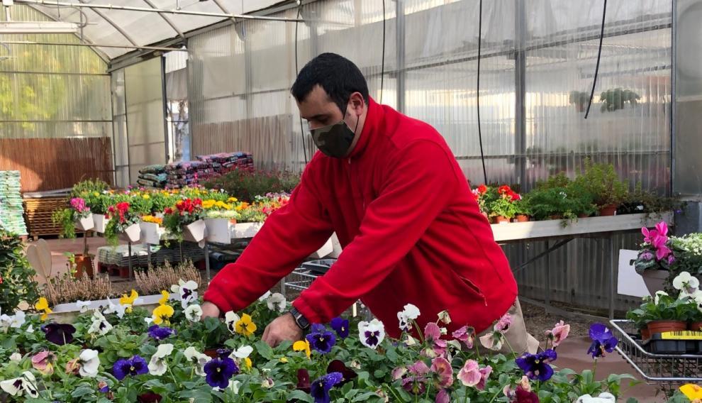 Adrián Navarro etiqueta varias plantas durante su jornada de trabajo en el Centro Especial de Empleo Gardeniers.