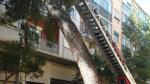 El árbol caído en la calle de Eloy Martínez.