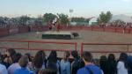 Imagen de archivo de la suelta de vaquillas en las fiestas de Miralbueno