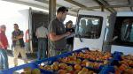Actividad en Mercofraga al comienzo de la campaña de fruta de hueso.