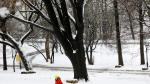 A boy pulls a sled during a winter storm in Riverside Park in upper Manhattan in New York City, New York, March 4, 2019. REUTERS/Mike Segar [[[REUTERS VOCENTO]]] USA-WEATHER/