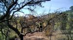 Un incendio calcina casi una hectárea  de bosque en el monte de Fraga.