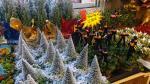 Muestra navideña en la plaza del Pilar