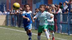 Final. Aragón Prebenjamín- Giner vs. El Olivar.