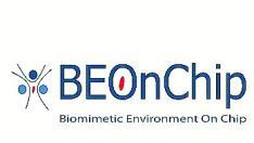 Logo Beonchip