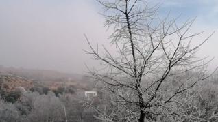 Niebla engelante este lunes en Alcañiz.