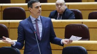 Pedro Sánchez, en la sesión de control del Senado
