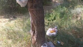 Latas, botellas, envases e incluso sillas rotas pueblan los márgenes del río entre los barrios rurales de Montañana y San Juan de Mozarrifar.
