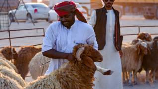 El mundo musulmán se prepara para celebrar la fiesta del cordero, mientras los más afortunados pueden realizar el hajj, la peregrinación a la Meca que todo musulmán debe realizar una vez en la vida. Este año, con imágenes muy diferentes.