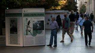 Una exposición en el paseo de la Independencia muestra algunas de las pequeñas y grandes historias recogidas por HERALDO en sus 125 años de historia.