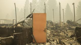 Bear Fire in Californi(35624281)