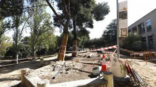 Concentración de colectivos para advertir el estado en el que se encuentran algunos árboles del Parque de Torre Ramona de Zaragoza