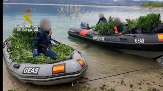 El desmantelamiento de la macroplantación de marihuana de Secastilla obligó a desplegar medios terrestres, aéreos y acuáticos.