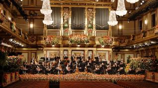Vienna Philharmonic N (36675514)