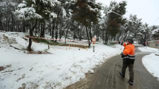 Zonas arboladas cerradas en Huesca.