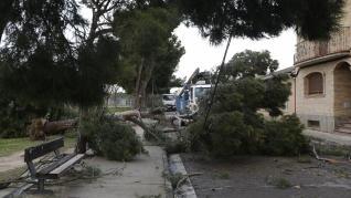 La tormenta Hortensia destroza el barrio de San Gregorio (Zaragoza)