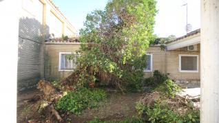 Los bomberos de la Diputación de Huesca colaboran con el Ayuntamiento de Almudévar en la retirada de un árbol que cayó sobre una vivienda.