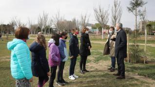 Plantación de árboles en Zaragoza