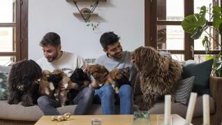 """Tras un año de relación, Ernesto García (27) y Jacobo de Rentería (31) decidieron lanzarse a la aventura de la convivencia con el inicio de la pandemia: """"Igual fue un poco precipitado, pero nos ha salido todo bien. No podríamos haber tomado una decisión m"""