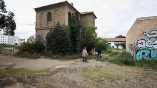 Foto de la colonia felina de los depósitos de Pignatelli en Zaragoza: