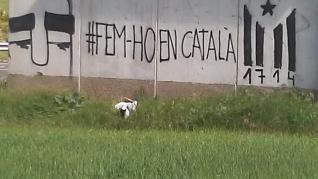 Pintadas catalanistas en pueblos del Aragón oriental.
