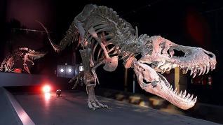 20 años rugiendo los dinosaurios en Dinópolis