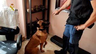 Detenido en Teruel un coleccionista de armas que tenía un depósito ilegal