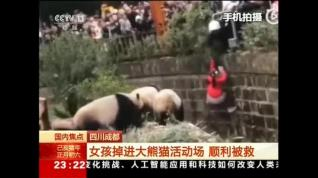 Rescatan a una niña en China tras caerse al foso de los pandas