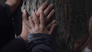 El bosque de los árboles con nombre