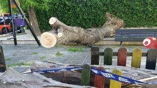 Un árbol cae sobre un banco en Tenerías.