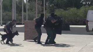 Más de 3.000 escolares asisten a una exhibición de la Guardia Civil en Zaragoza