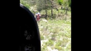 Atacado por unas vacas un excursionista que iba con su perro en la zona de la Cola de Caballo
