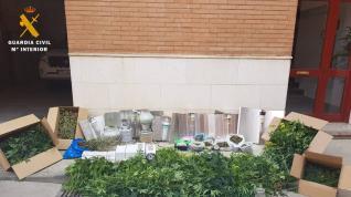 cultivo marihuana vivienda Torrellas, plantación marihuana Torrellas, detenido Torrellas,