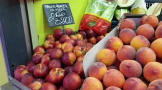Estas son las frutas de temporada, ¿cuál eliges?